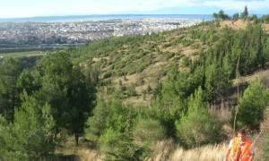 Θεσσαλονίκη: Γιατί απαγορεύτηκε η κυκλοφορία στο Σέιχ Σου