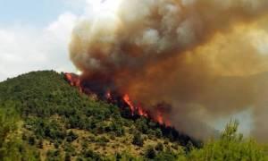 Σε εξέλιξη πυρκαγιές σε Αγρίνιο και Βόλο