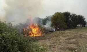 Φωτιά ΤΩΡΑ: Πυρκαγιά στην περιοχή Αποκορώνου Χανίων