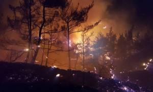 Φωτιά ΤΩΡΑ: Δύσκολη νύχτα σε Χανιά, Μάνη, Μέγαρα, Πάτρα