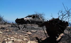 Σε πύρινο κλοιό η Ελλάδα: Στις φλόγες Μάνη, Μέγαρα και Πάτρα