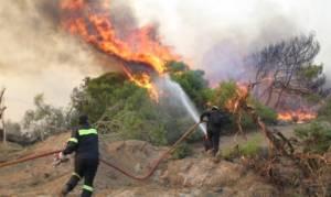 Φωτιά ΤΩΡΑ: Μεγάλη πυρκαγιά στον Κάλαμο Αττικής
