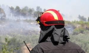 Φωτιά ΤΩΡΑ: Μεγάλη πυρκαγιά στον Πλακιά Ρεθύμνου
