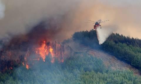 Μεγάλη φωτιά μαίνεται στη Μεσσηνία