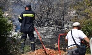 Σε ύφεση η φωτιά στη Μεσσηνία