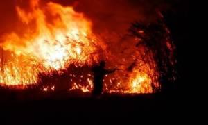 Φωτιά Ηράκλειο: Υπό μερικό έλεγχο η πυρκαγιά στην περιοχή του Προφήτη Ηλία