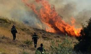 Κρήτη: Μεγάλη φωτιά στη Σητεία