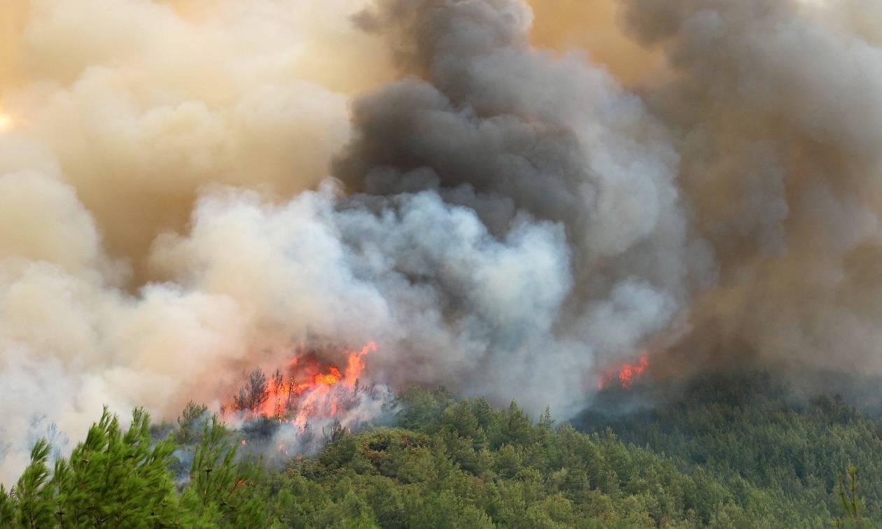 Πυρκαγιά στην Ιεράπετρα - ΤΩΡΑ
