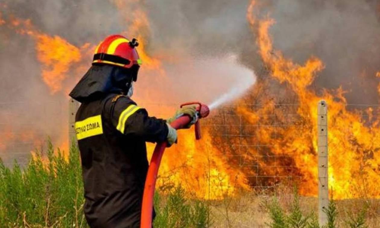 Πενήντα έξι δασικές πυρκαγιές εκδηλώθηκαν σε όλη την Ελλάδα, το τελευταίο 24ωρο