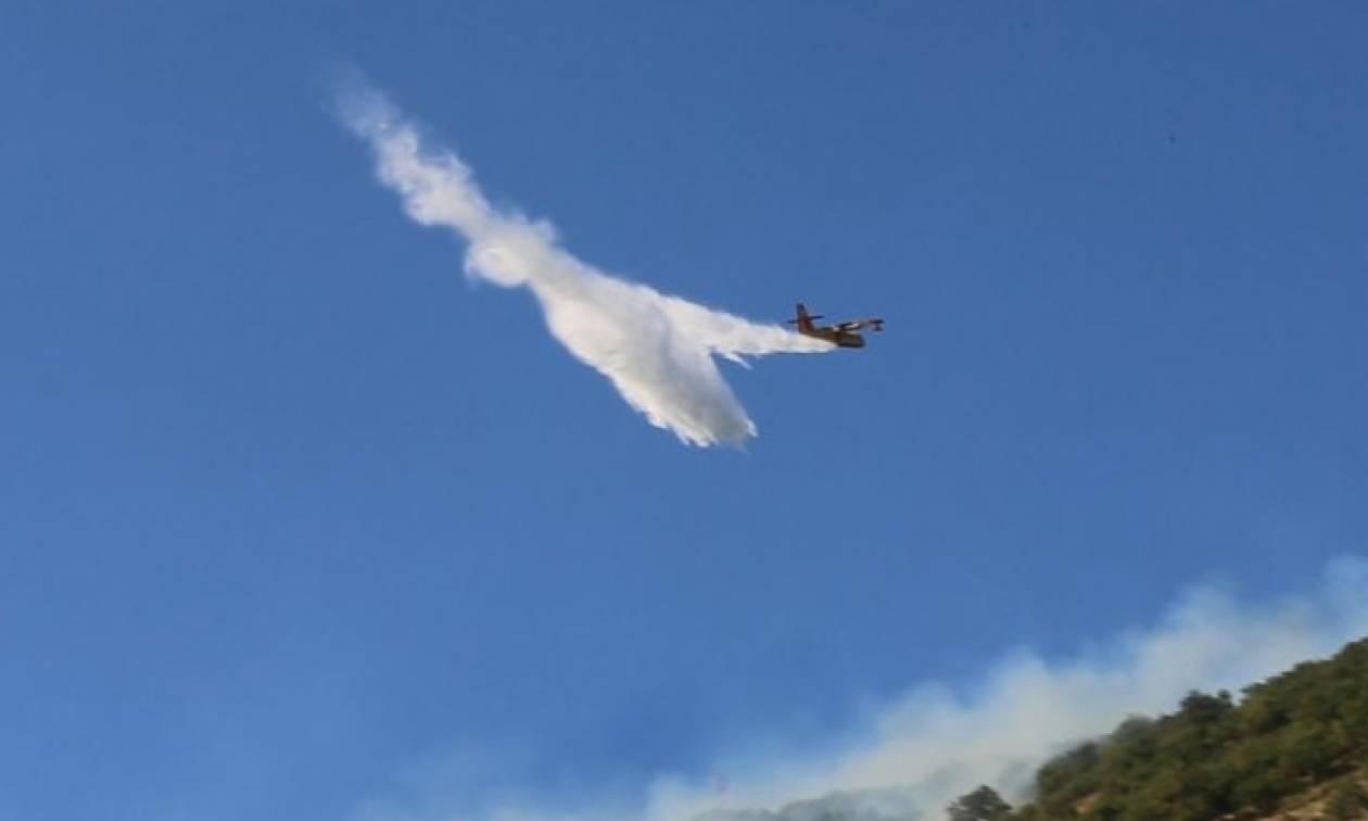 Λασίθι: Σε ύφεση η πυρκαγιά στην Ανατολή Ιεράπετρας