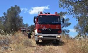 Ζάκυνθος: Σε ύφεση η μεγάλη πυρκαγιά