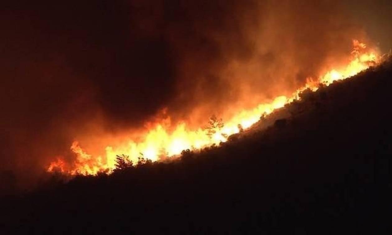 Φωτιά ΤΩΡΑ: Δύσκολη νύχτα στη Ζάκυνθο - Εκτός ελέγχου η πυρκαγιά στα Ορθωνιά