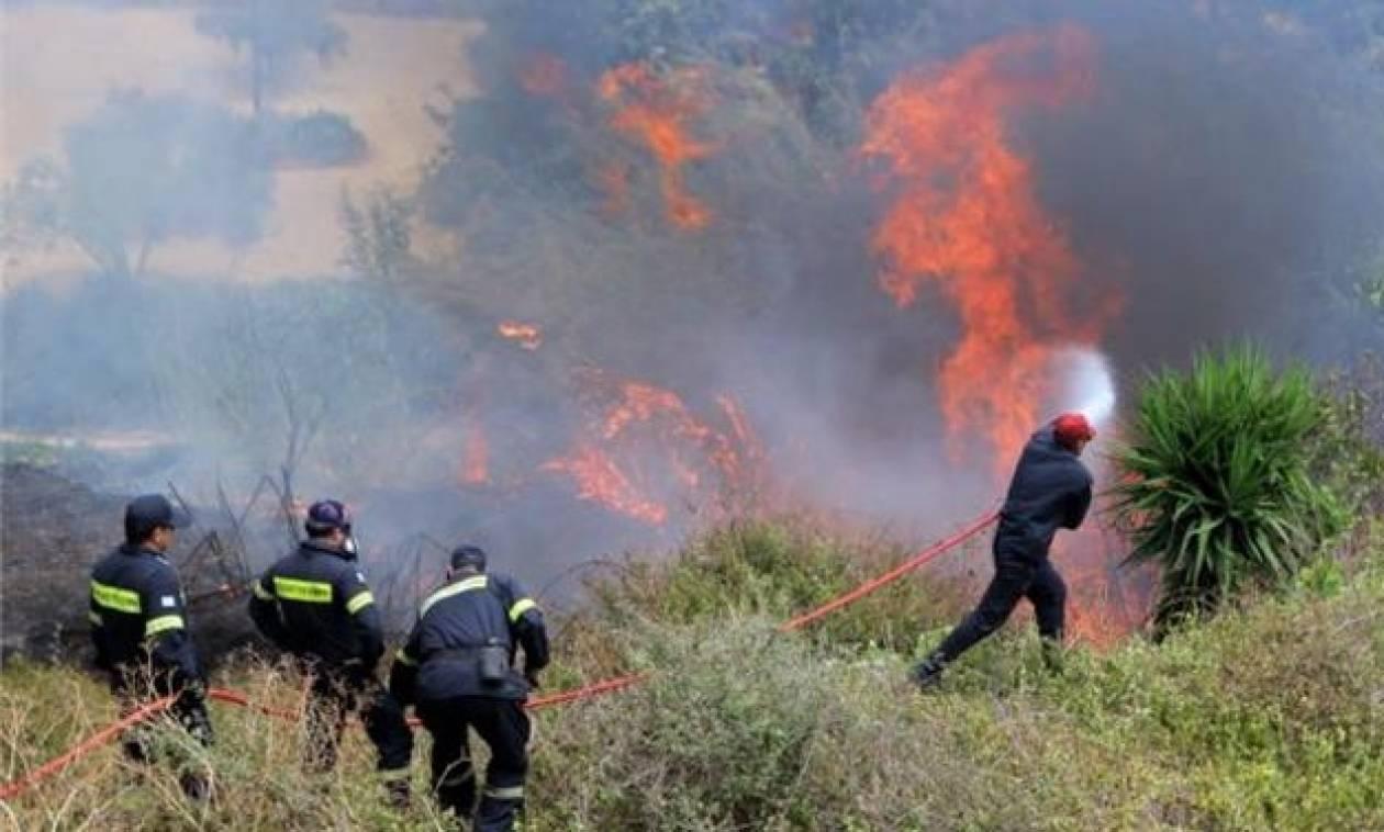 Φωτιά ΤΩΡΑ: Μάχη των πυροσβεστών με τις φλόγες στο Εξωχώρι Μεσσηνίας