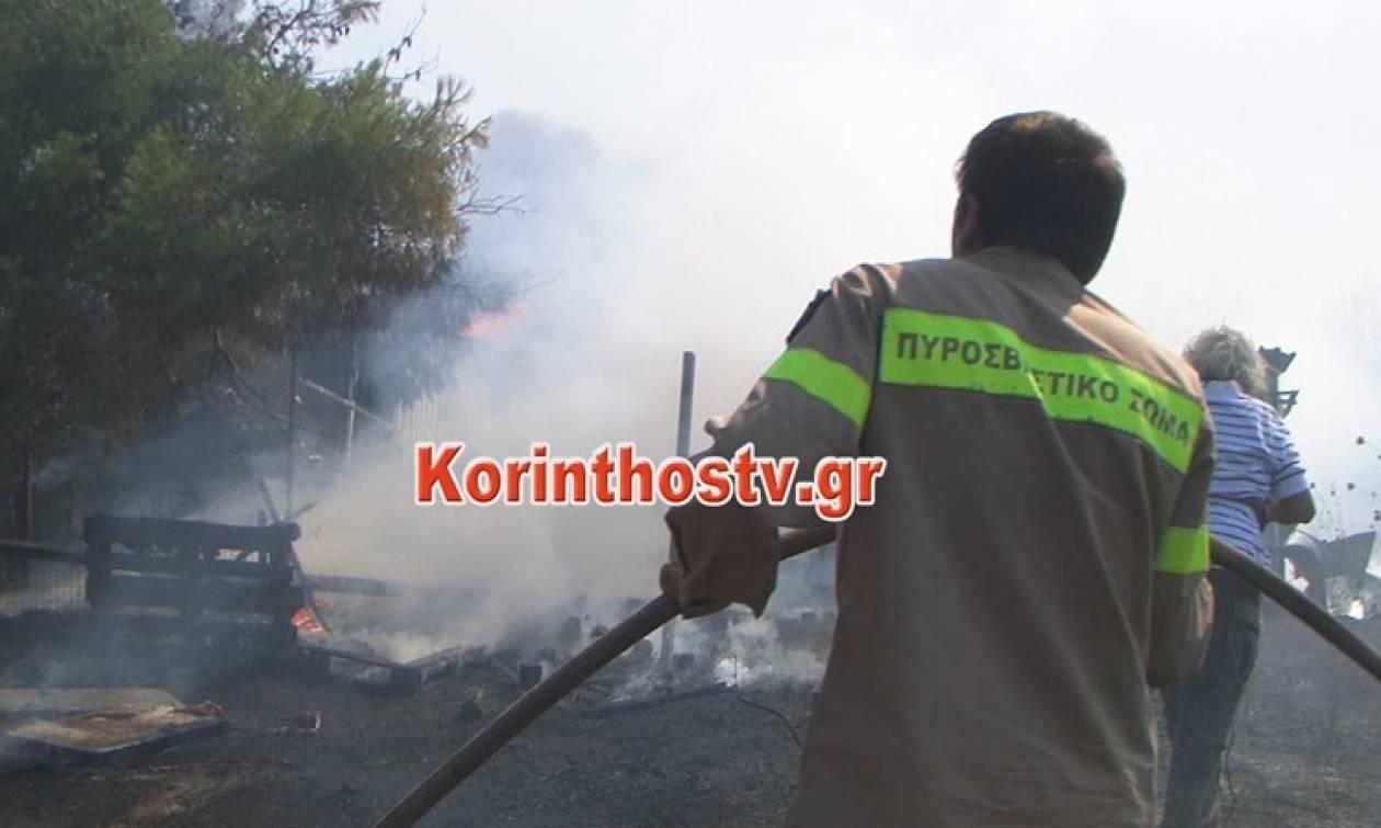 Ολονύχτια μάχη με τις φλόγες στο Ζευγολατιό Κορινθίας - Τρεις πυροσβέστες τραυματίες