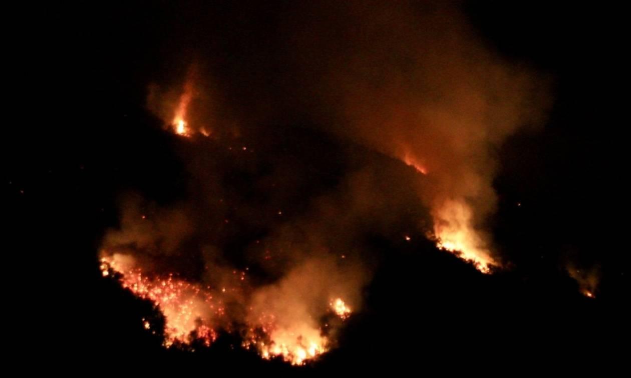 Καίγεται η Ιταλία: Δύο νεκροί στις πυρκαγιές που μαίνονται στην Καλαβρία