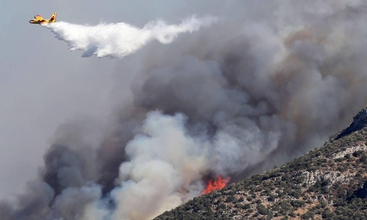 Μαίνεται η πυρκαγιά στο Σουφλί - Σκληρή η«μάχη» των πυροσβεστών με τις φλόγες