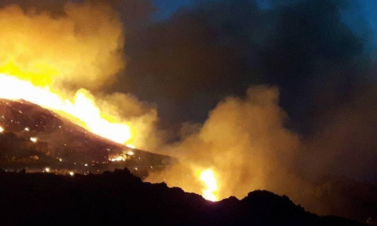 Υπό μερικό έλεγχο η μεγάλη φωτιά στα Χανιά