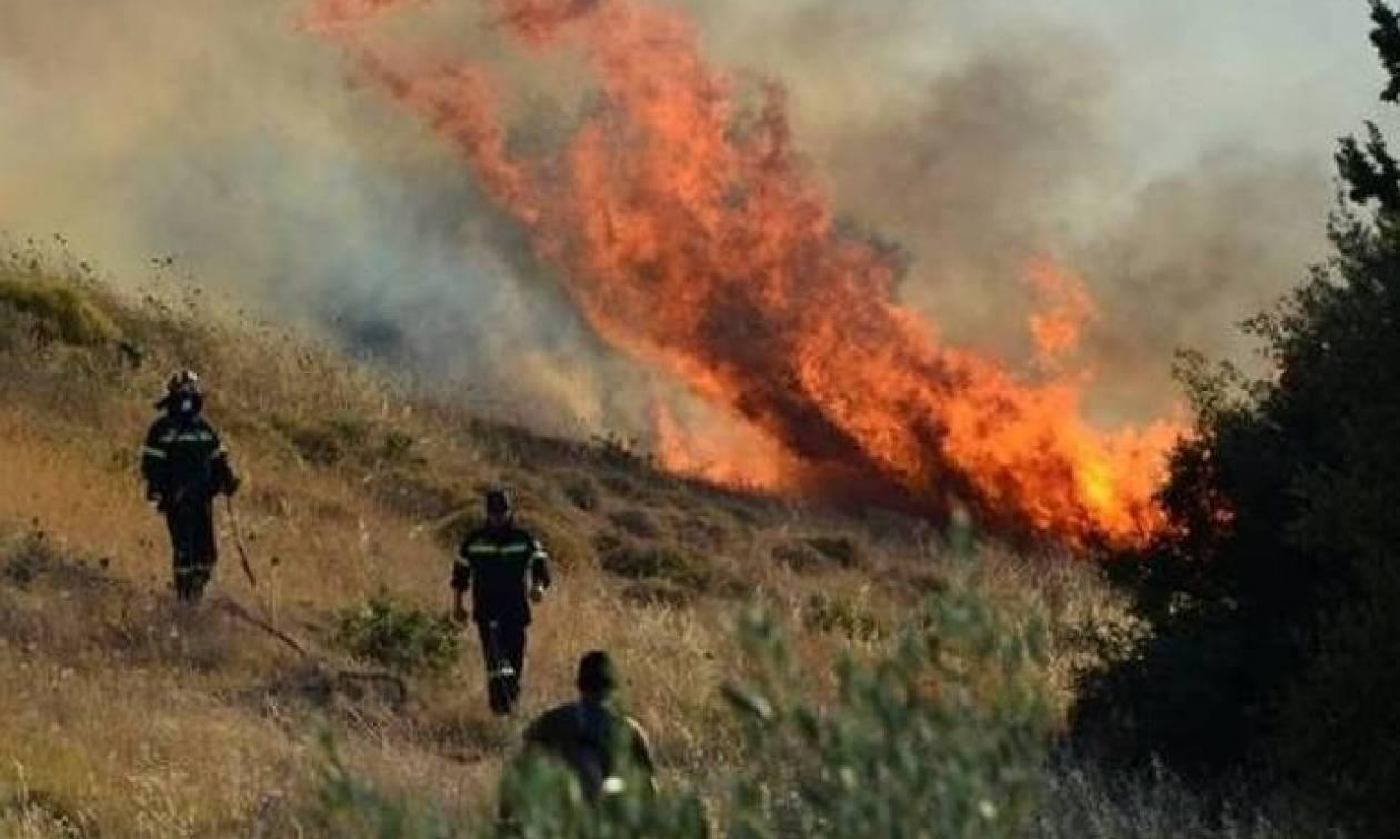 Φωτιά στην Αχαΐα