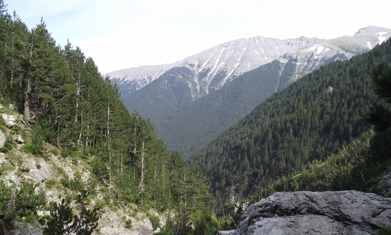 Θρίλερ με ορειβάτη στον Όλυμπο