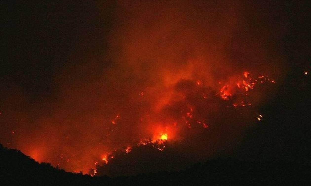 Φωτιά ΤΩΡΑ: Σε εξέλιξη μεγάλη πυρκαγιά στην Κερατέα