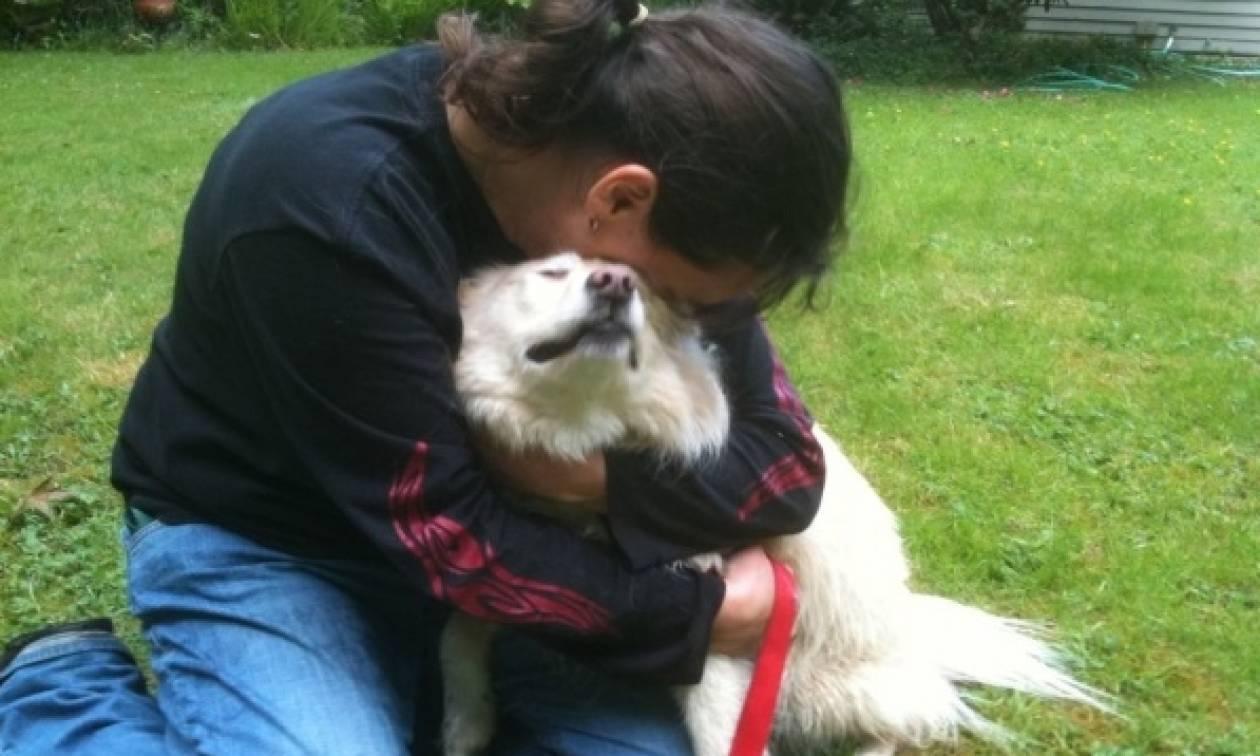 Η Καρδίτσα πρωτοπορεί και παρέχει δωρεάν ηλεκτρονική σήμανση για ζώα συντροφιάς