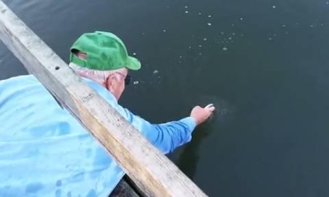 Αφήνει νεκρά ψαράκια στην επιφάνεια της θάλασσας! Δείτε τι θα συμβεί... (video)