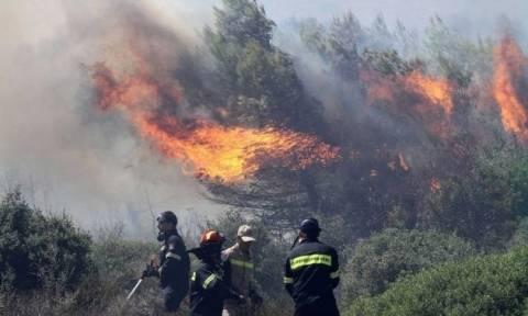 Νέα πυρκαγιά στη Ζάκυνθο κοντά στο χωριό Μαχαιράδο