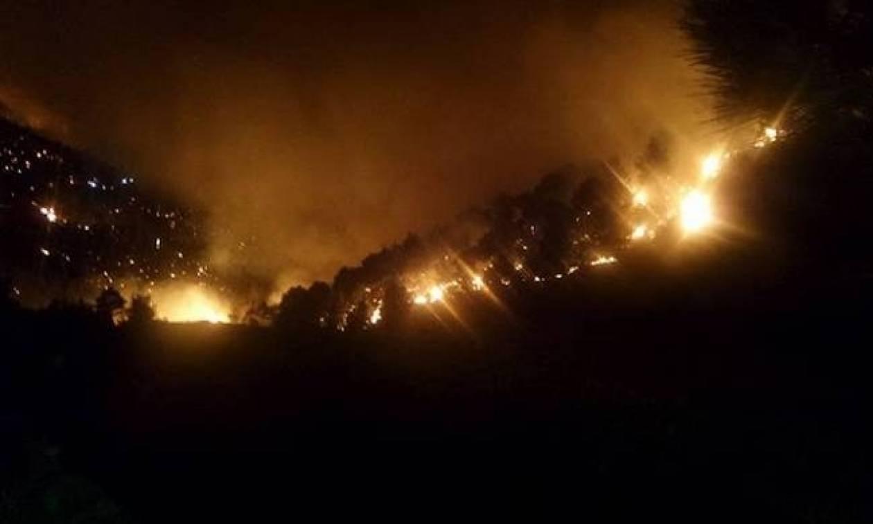 Φωτιά τώρα: Νέα πυρκαγιά στην Κέρκυρα - Μάχη με τις φλόγες στην περιοχή του Άγιου Μαρτίνου