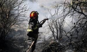 Κρήτη: Ολονύχτια μάχη με τις φλόγες στον Προφήτη Ηλία