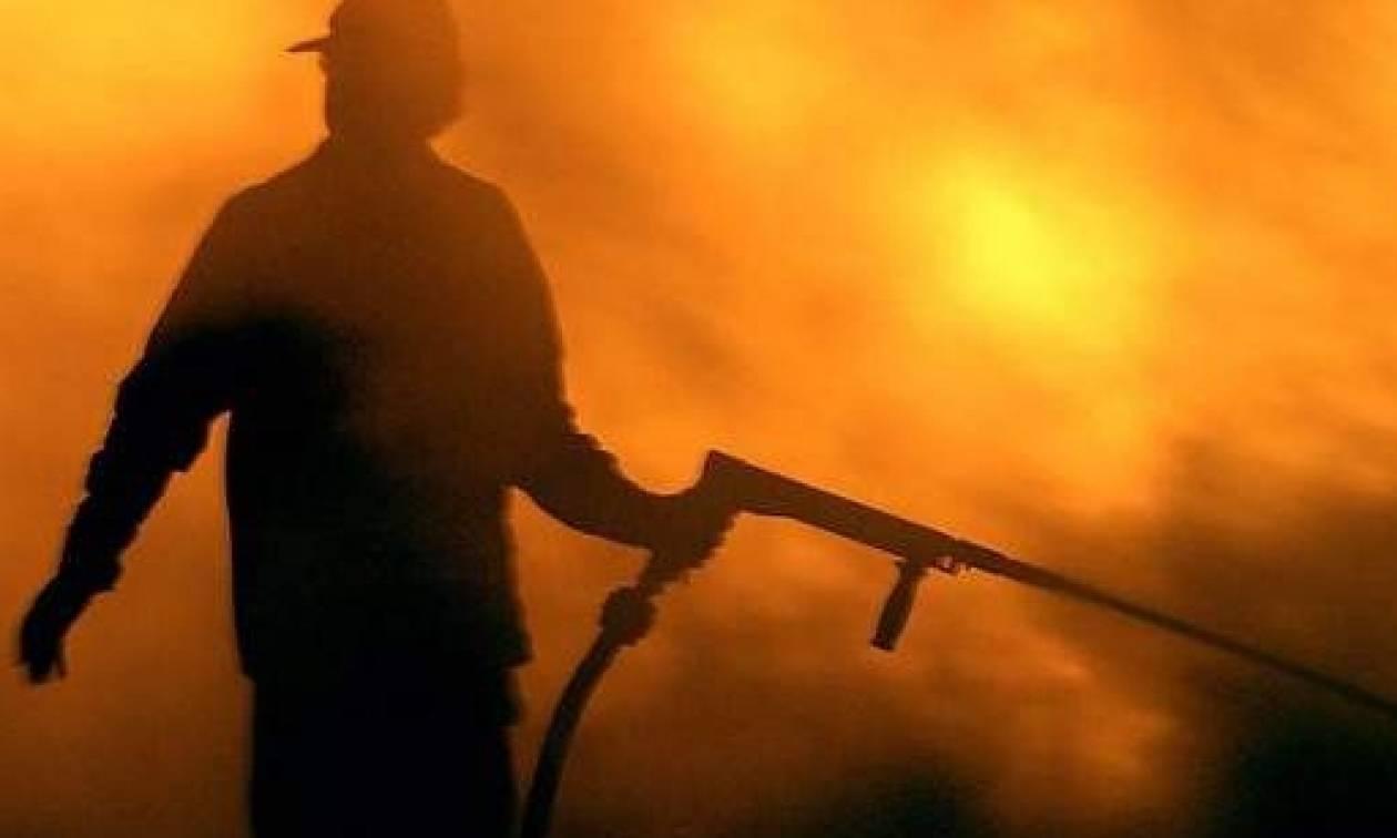 Μυτιλήνη: Μεγάλη πυρκαγιά σε εξέλιξη στην περιοχή της Καράβας