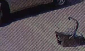 Φρίκη: Πα-τέρας εγκατέλειψε στο δρόμο το δύο εβδομάδων παιδί του (video)