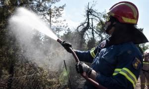 Φωτιά ΤΩΡΑ στη Λάρισα