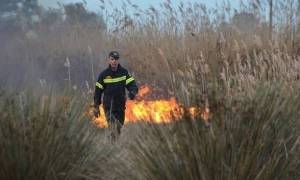 Φωτιά στη Λάρισα: Ενισχύονται οι δυνάμεις της πυροσβεστικής