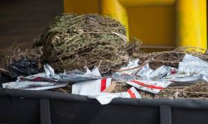 Συλλήψεις 3 ατόμων για εισαγωγή μεγάλης ποσότητας κάνναβης