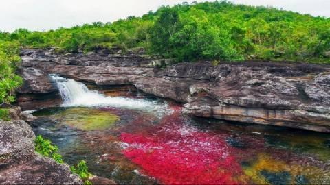 Ο ποταμός των Πέντε Χρωμάτων στην Κολομβία