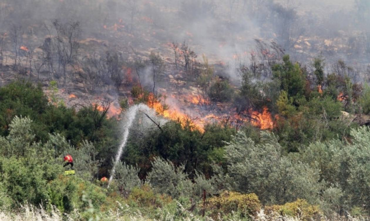 Συναγερμός στο Πικέρμι για μεγάλη φωτιά – Οι φλόγες απείλησαν ξενοδοχείο