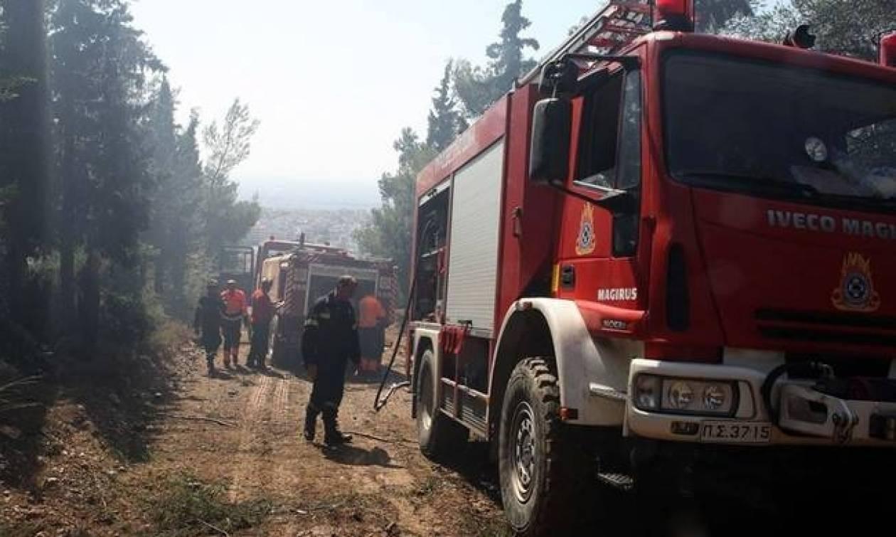 Πολύ υψηλός ο κίνδυνος πυρκαγιάς τη Δευτέρα (31/7) - Ποιες περιοχές απειλούνται