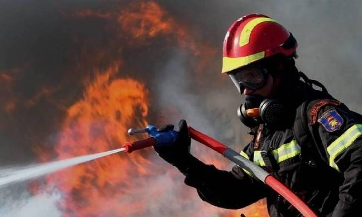 Υπό πλήρη έλεγχο η φωτιά στον Φλοίσβο