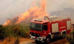 Μεγάλη φωτιά ΤΩΡΑ στα Καλύβια Αττικής - Κοντά σε σπίτια οι φλόγες