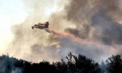 Πορτοκαλί συναγερμός! Ο χάρτης πρόβλεψης κινδύνου πυρκαγιάς για την Τρίτη 1/8 (pics)