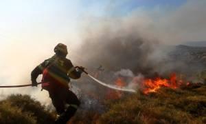 Συναγερμός στην Πύλο για μεγάλη φωτιά