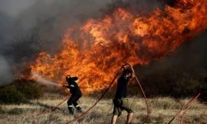 Μεγάλη φωτιά ΤΩΡΑ στην Ανάβυσσο Αττικής