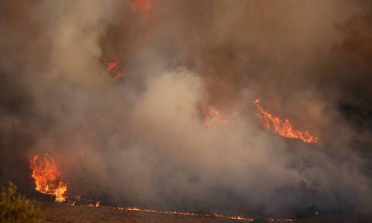 Φωτιά και στο νησάκι Χρυσή – Με σκάφος μετέβησαν οι πυροσβέστες