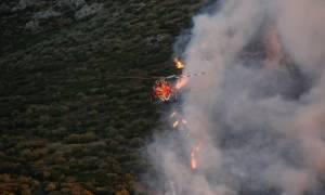 Φωτιά - Aνακοίνωση της Γενικής Γραμματείας Πολιτικής Προστασίας