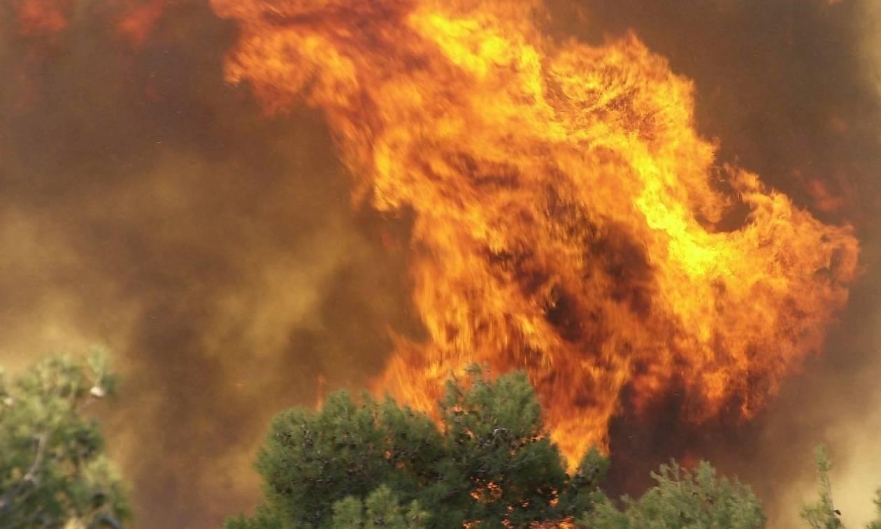 Φωτιά ΤΩΡΑ: Πύρινος εφιάλτης σε Σπέτσες και Ανάβυσσο - Απειλούνται σπίτια (pics+vids)
