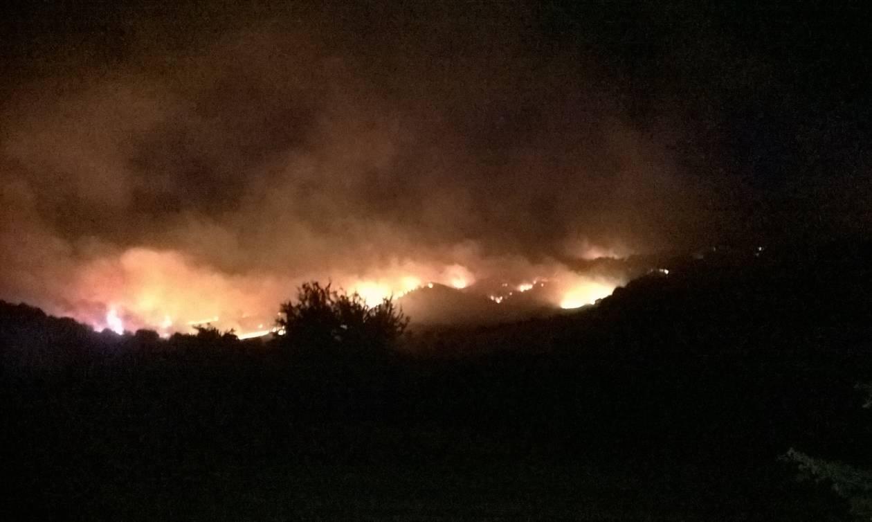 Φωτιά ΤΩΡΑ: Μάχη με τις φλόγες στο Αδάμι Αργολίδας