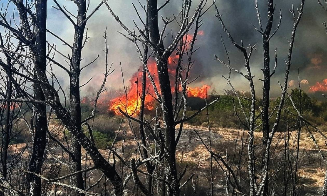 Φωτιά – Προσοχή! Ανακοίνωση της Γενικής Γραμματείας Πολιτικής Προστασίας