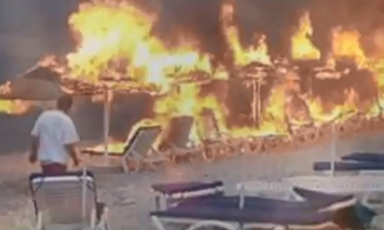 Συγκλονιστικό βίντεο από τη φωτιά στις Σπέτσες: Βούτηξαν στη θάλασσα για να σωθούν