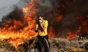 Μεγάλη φωτιά μαίνεται στην Ηλεία
