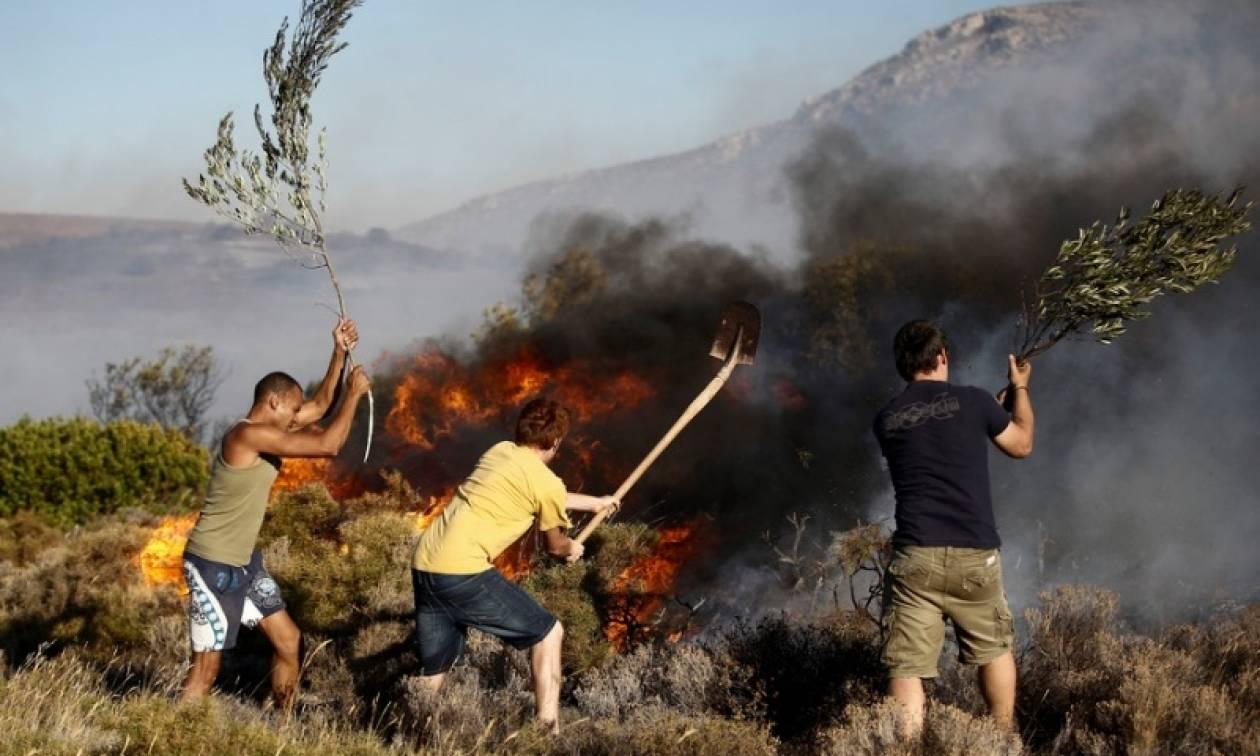 Συναγερμός για φωτιά ΤΩΡΑ κοντά στην Εθνική Οδό Αθηνών – Πατρών